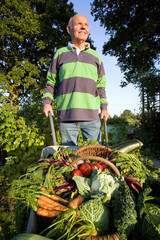 Man picking vegetables in garden