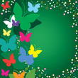 Green  background with butterflies, vector illustration