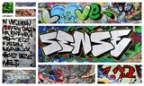 love und sense poster