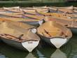 barques au Bois de Boulogne-Paris 1