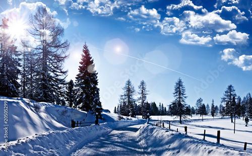 Fototapeten,winter,landschaft,schnee,winterlandschaft