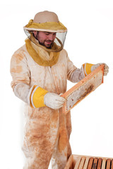 Inspecting The Honey