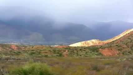 Desert Snowstorm