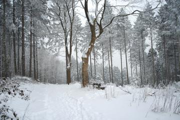 Winterzauber über Iserlohn
