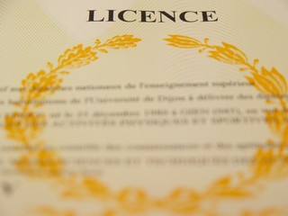 Licence universitaire