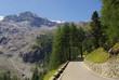 Stilfser Joch - Stelvio Pass 09
