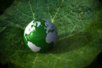 3d green globe on a leave