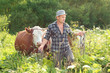 farmer and cows