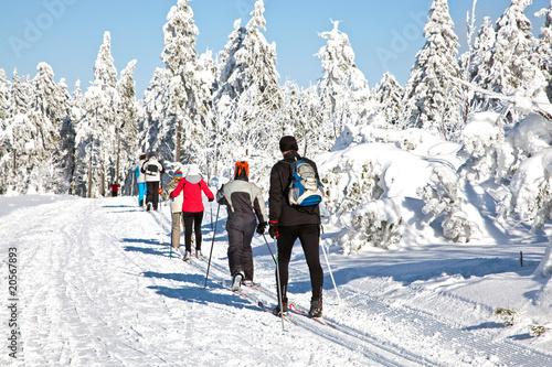 Ski Langlauf  4594 - 20567893