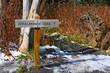 appalachian trail in Great Smoky Mountains, USA - 20577006