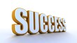 canvas print picture - Success 3d