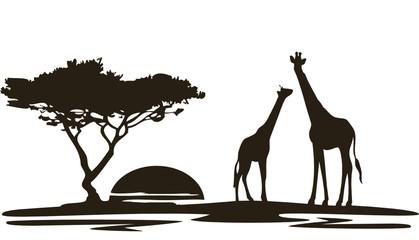 Giraffe2010Afrika