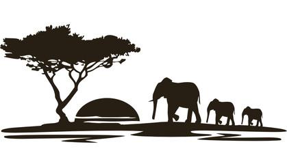 Natur2010Afrika