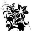 Beautiful black decorative floral ornament