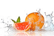 Leinwanddruck Bild - Water splash on grapefruit with mint isolated on white