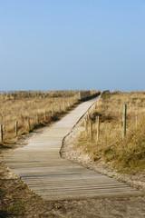 sauver les dunes