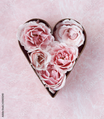 pink roses in a cookie cutter