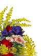 Mimosa con fiori