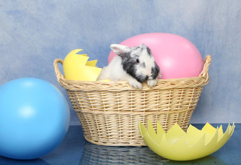 Easter Bunny Basket with Giant Eggs
