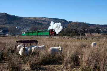 Llanberis steam train