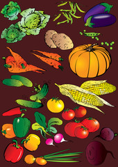 Collection of different vegetables on a red background.