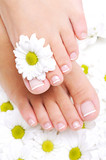 well-groomed female feet with beautiful toenails poster