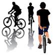 Regular and monowheel bike