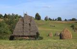 Landscape in Transylvania poster