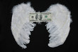 wings of money