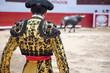 Leinwanddruck Bild - Matador in Ring with Bull