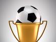 Fotball trophy