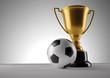 Fotball champion trophy