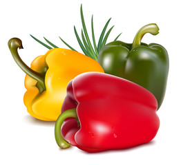 Photo-realistic vector. Color peppers with onion.