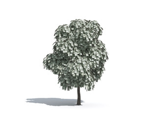 money tree 2 - USD