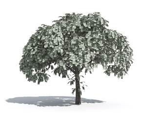 money tree 1 - USD