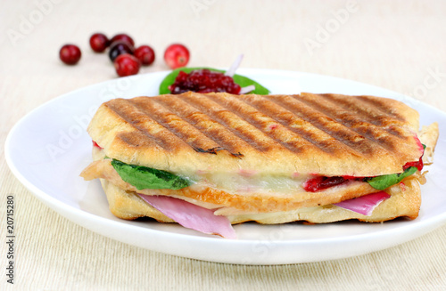 Delicous Panini of fresh turkey, spinach, melted cheese and cran