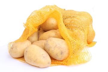 Potatoes in net / 土豆