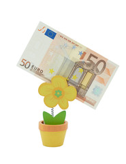 50 euro banknote in a holder in the form of flower pot