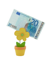 20 euro banknote in a holder in the form of flower pot
