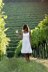 Young woman in vineyard holding wine glass