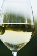 Glass of white wine in vineyard