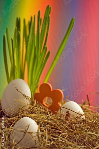 Leinwanddruck Bild buntes Nest zu Ostern