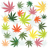 Marijuana leaves poster