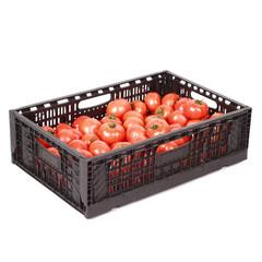 Fresh tomatos in box isolated on white