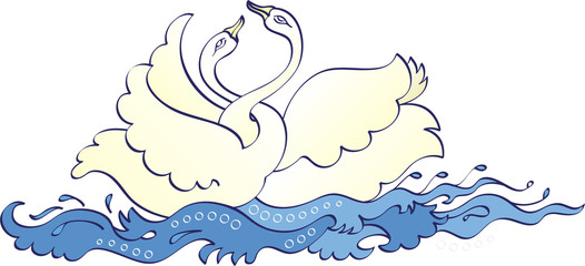 Bird Pair romancing in water