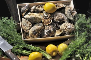 Austern, Meeresfrüchte, Schalentiere, Luxus