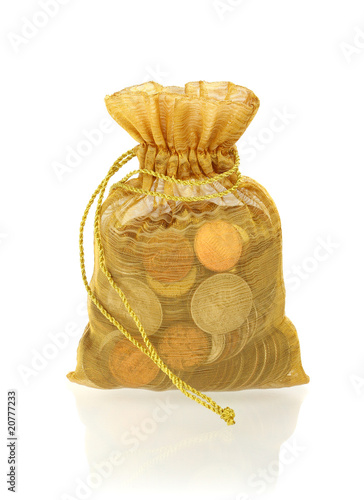 Gold Money Bag