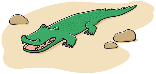 crocodile sieste