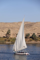 Faluca sobre el nilo, Egipto
