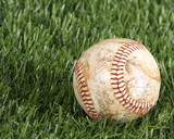 Baseball laying in the grass